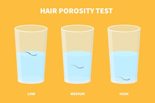 Natural hair porosity float test infographics. Strand with low, normal and high cuticle porosity in a glass of water. Anatomical structure scheme. Cartoon vector illustration.