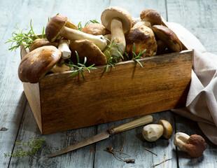 fresh forest porcini Mushroom on kitchen table