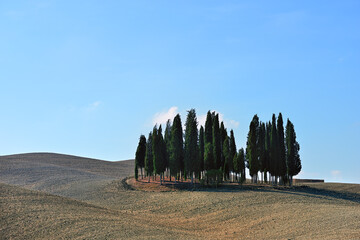 Landscape of autumn field in Tuscany, Italy