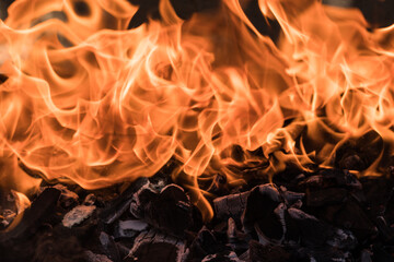 A bright flame of fire on the coals