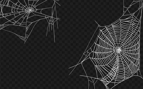 Halloween monochrome spider web. Set of different spiderwebs isolated on black, easy to print. Halloween set with web. Vector Illustration.