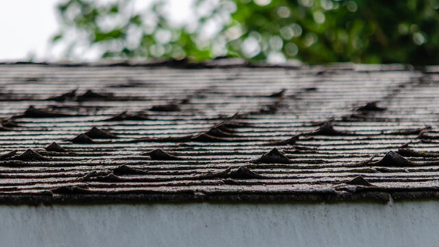 Close-up of curled roofing shingles