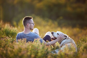 Man with dog lying on meadow at sunset