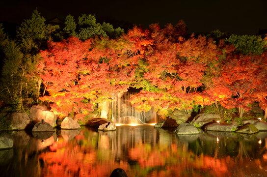 【兵庫県】姫路市・好古園の紅葉