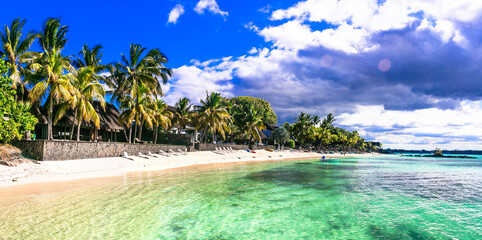 Dream beach scenery. Idyllic tropical landscape with white sands and palm trees