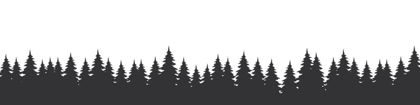Forest landscape with silhouettes of coniferous trees. Horizontal backgrounds of nature. Vector illustration