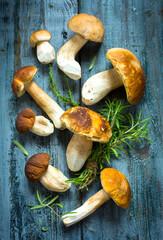 Art Mushrooms cep in autumn season