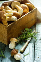 Art Basket with fresh wild mushrooms and knife on grey wooden table