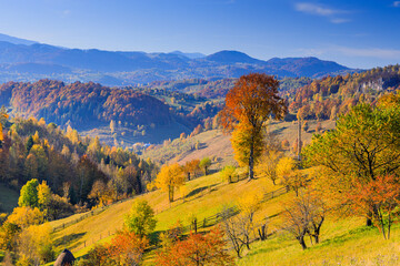 Brasov, Romania. Magura village landscape in autumn.