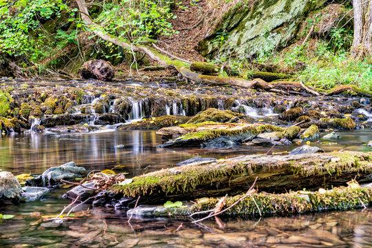 Sommerlicher Wasserstand am Dörsbach