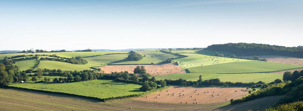 landscape with cornfields and meadows in regional parc de caps et marais d'opale in the north of france
