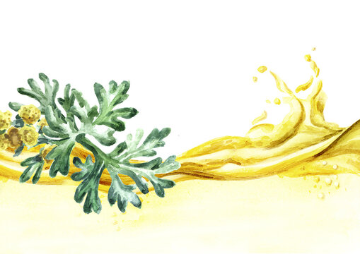 Sprigs, leaf anf flowers of medicinal plant wormwood essential oil wave. Hand drawn watercolor illustration isolated on white background