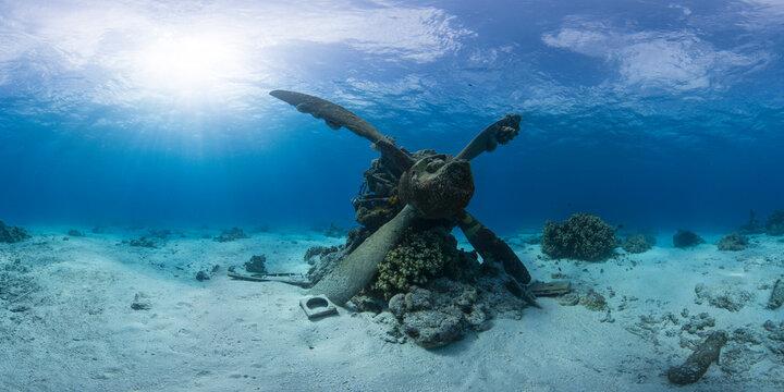 WWI plane wreck in ocean in Saipan