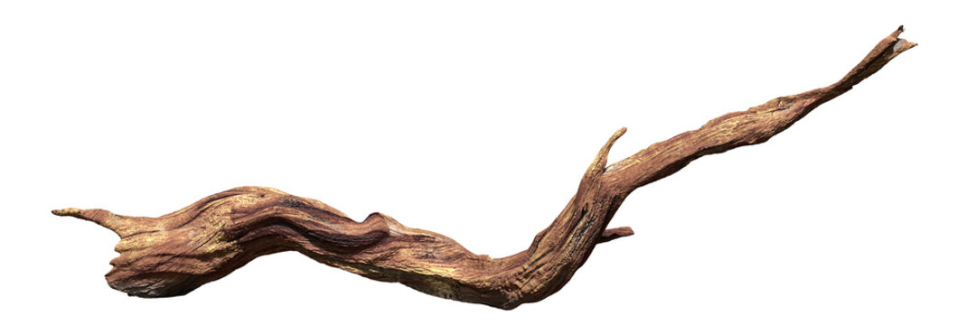 driftwood isolated on white background, old wood