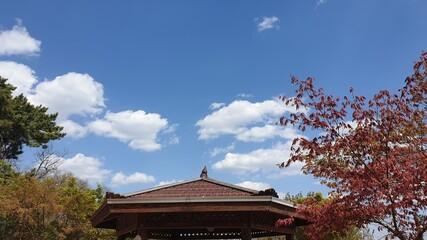 파란 하늘 Fotobehang