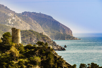 Spanish coast with Pine Tower, Andalusia.