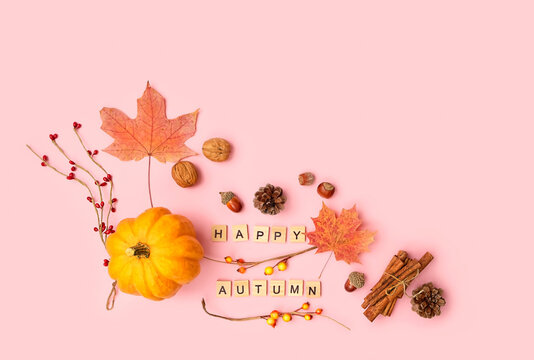 pumpkin, maple leaves, cones, nuts, cinnamon on pink background. Thanksgiving, Halloween Festive concept. flat lay. copy space