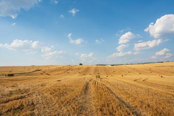 Photo sur Plexiglas Bleu jean Freshly mowed wheat field. Picturesque summer landscape in the center of the Iberian Peninsula.