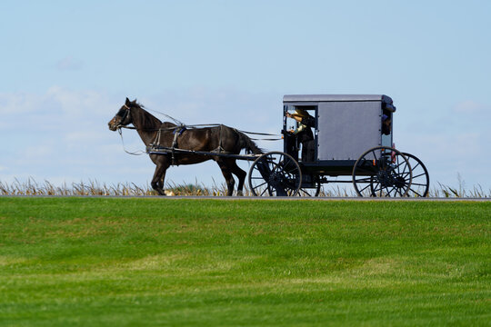 Silhouette view of an Amish Buggy
