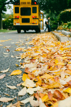 Male Student Exits School Bus On Autumn Leaf Covered Street