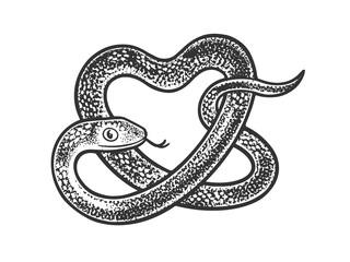 snake in form of heart sketch raster illustration