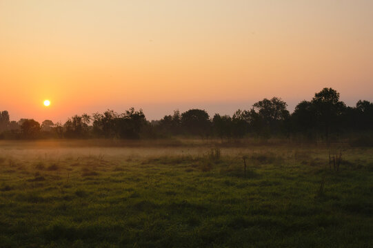 Sun rising over a grassy field in the Weelsby Woods area of Grimsby, North East Lincolnshire, England, United Kingdom