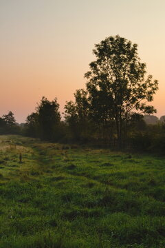 Sun rising over a grassy field in the Weelsby Woods area of Grimsby, North East Lincolnshire, England, United Kingdom.