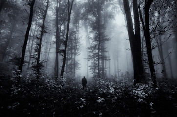 man in dark scary fantasy forest