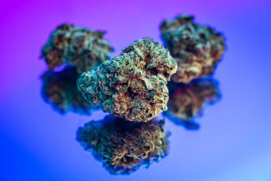 Close up of Marijuana