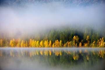 Autumn landscape in the mountains with trees reflecting in the water at St. Ana's lake, Romania