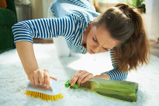 focused modern woman with cleaning agent and brush clean carpet