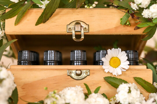 Wooden essential oil storage box with bottle caps visible sitting in bed of white flowers. Wellness image featuring chrysanthemums.