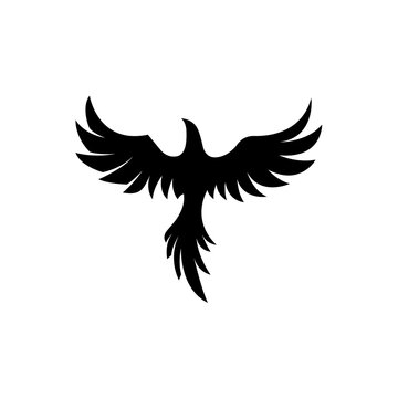 Illustration vector graphic template of phoenix flying silhouette logo