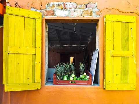 Brightly colored window with tropical fruits on the ledge