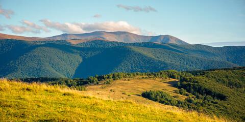 beautiful rural landscape in autumn. field on hillside in mountains in evening light