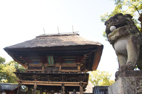 阿蘇青井神社の茅葺き門と狛犬