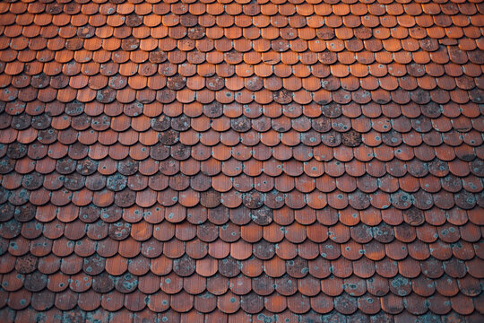Beautiful Old Roof