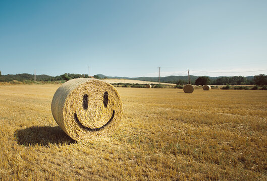 Smile face in a bale of straw
