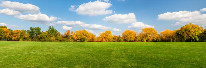Autumn scenes under sunny day