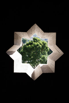 Star shaped window and tree in the outside