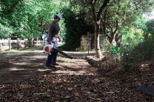 Gardener clearing driveway of leaves