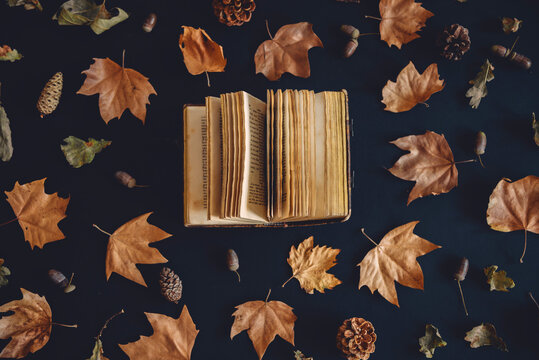 Vintage book and autumn maple leaves on dark background from above. Autumnal nature pattern and literature creative concept. Flat lay. Fall season art composition wallpaper.