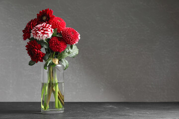 Photo sur Plexiglas Dahlia Beautiful dahlia flowers in vase on table against grey background. Space for text
