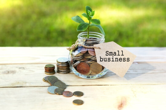 Small business. Glass jar with coins and a plant in it, with a label on the jar and a few coins on a wooden table, natural background. Finance and investment concept.