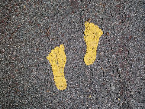 Yellow feet