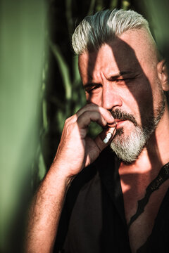 Strong brutal bearded middle aged male with gray hair smoking joint while standing among tall green plants