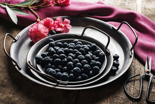 From above of fresh ripe blueberries in metal bowl placed near pink flower and wine napkin