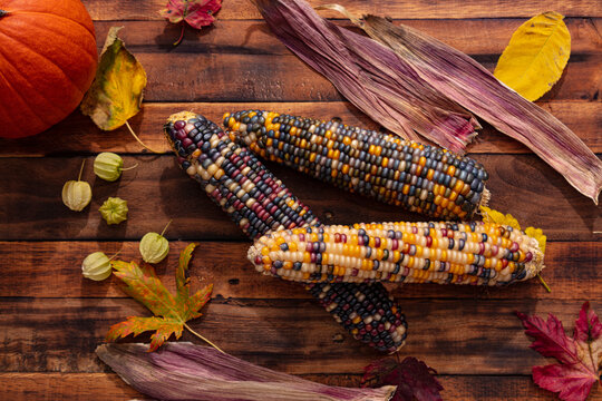 Native American Corn on a Wooden Background