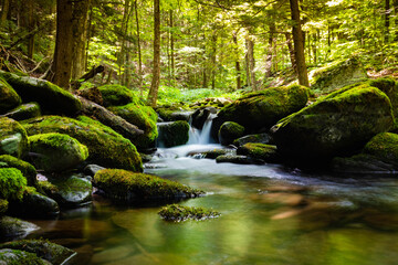 Peaceful view of summer river flowing through the green rocks