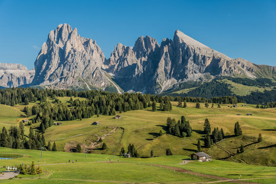 View of the Saslonch, Sassolungo or Langkofel, the highest mountain of the Langkofel Group from Alpe di Siusi or Seiser Alm in the Dolomites in South Tyrol, Italy
